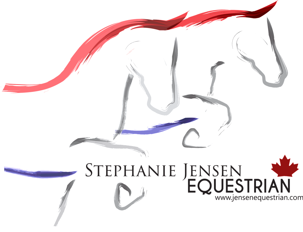 SJE Logo Transparent full vector
